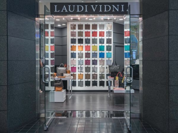 Laudi Vidni Michigan Avenue