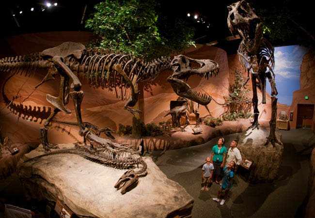 5 Secrets of Thanksgiving Point that Will Make You Want to Visit ASAP - Dinosaur Museum