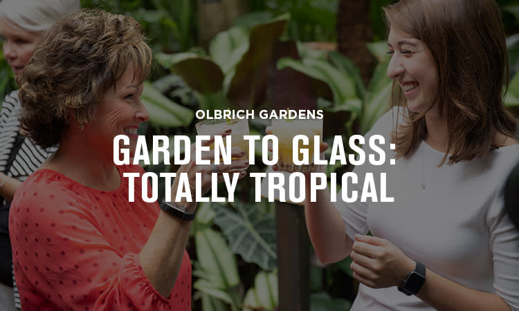 Olbrich Gardens Garden to Glass: Totally Tropical Essential Madison Experience