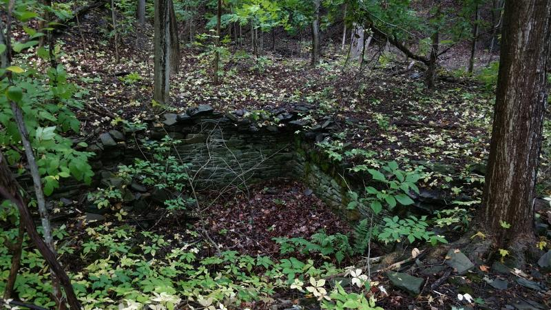 An old cobblestone foundation is set into the ground, long since abandoned to nature.