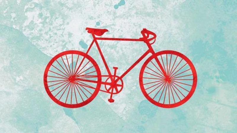Delta Bike Project
