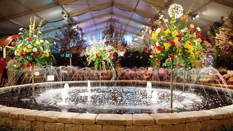 Festival of Flowers 1