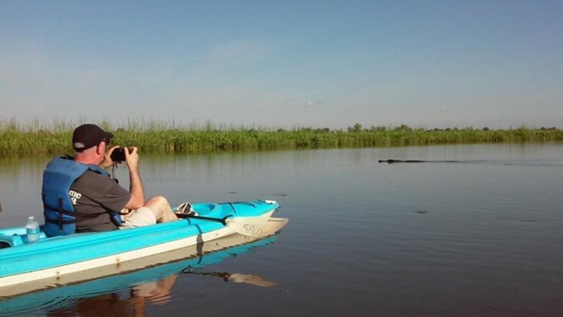 Five Rivers Delta Safaris
