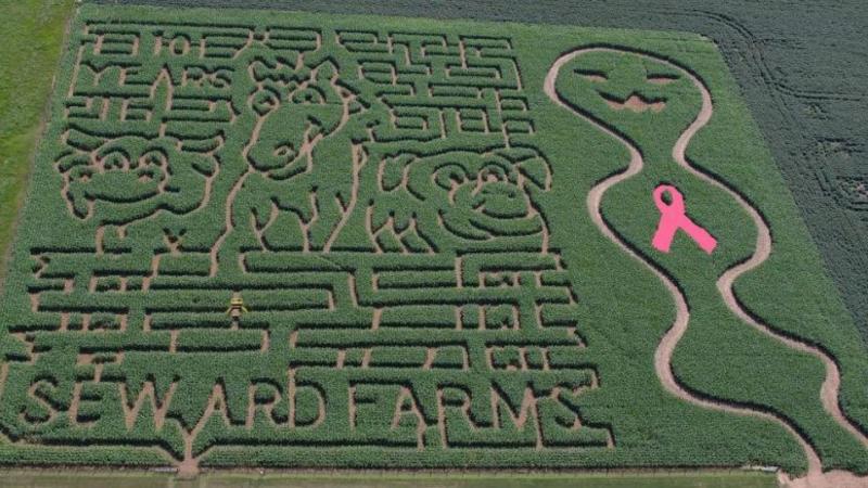 Seward Farms Maze