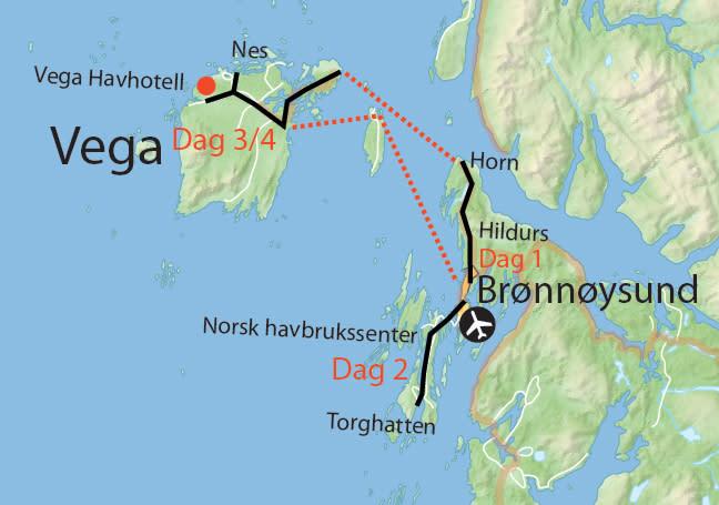 Øyhopping på Helgelandskysten: Smak og sykkellykke