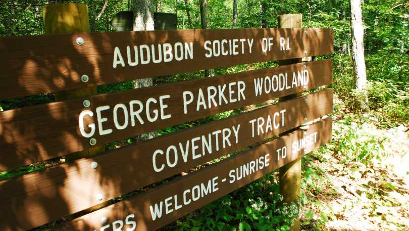 George_B_Parker_Woodland_Coventry_Tract.JPG.jpg