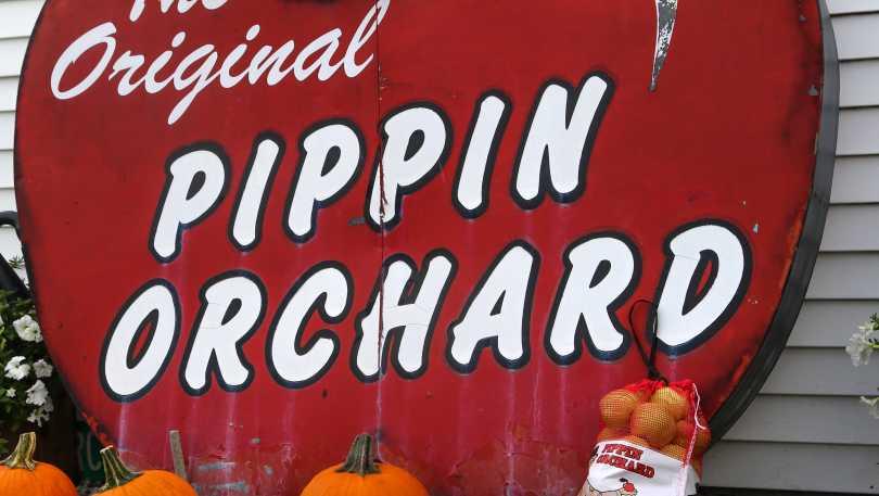 Pippin Orchard Nurseries