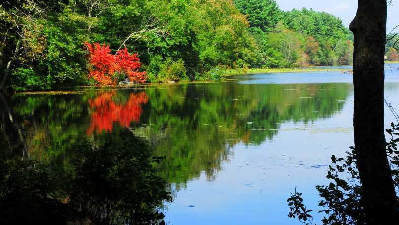 Waterman_Pond.JPG.jpg