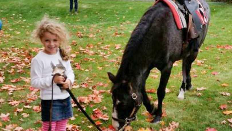 Ponies to Go