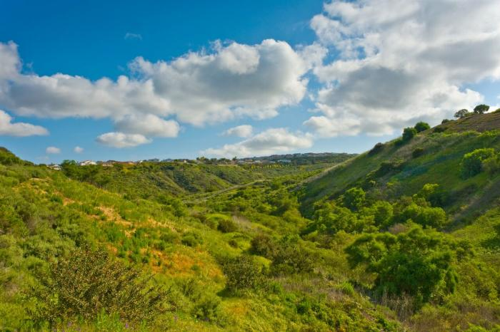 Irvine Ranch Natural Landmarks