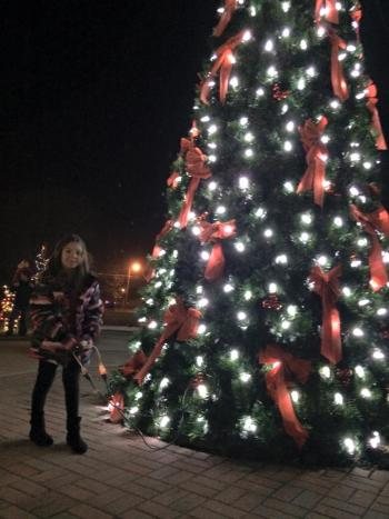 Brownsburg Town Hall Christmas Tree (Photo courtesy of Brownsburg Christmas Under the Stars Facebook page)