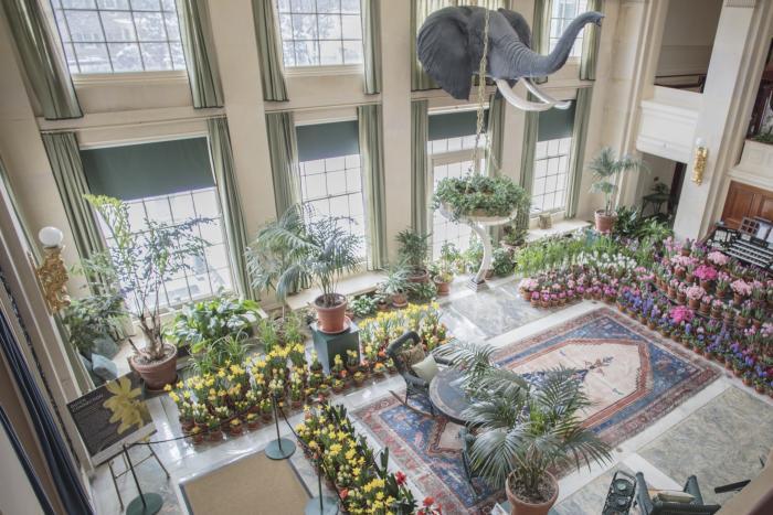 George Eastman Museum Dutch Connection