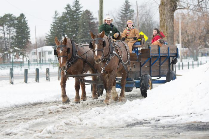 Holiday Tradition, Cayuga County