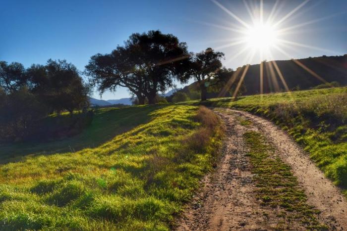 Limestone Canyon Reserve -Irvine Ranch