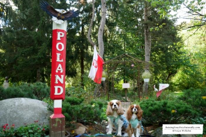Dogs at Friendship Botanic Gardens