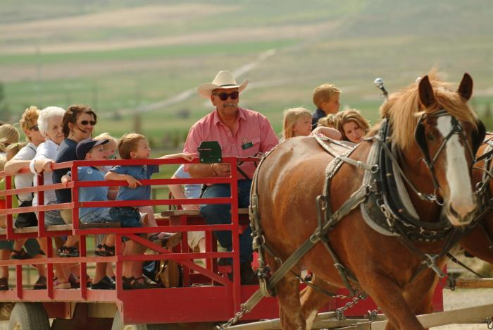 Family riding on a wagon at Farm Country