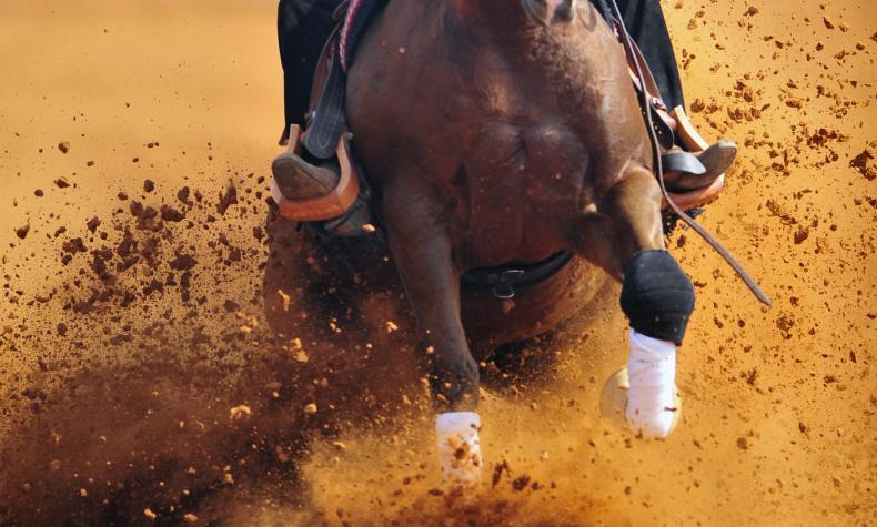 "Nat'l Stock Horse Assn ""Futurity, Derby, & World's Richest Stock Horse"""