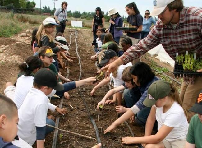 Student Farm to Fork
