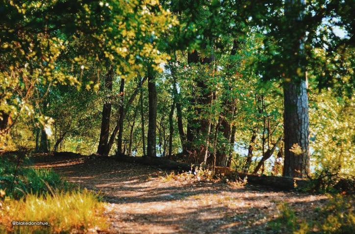 Sam Houston Jones State Park