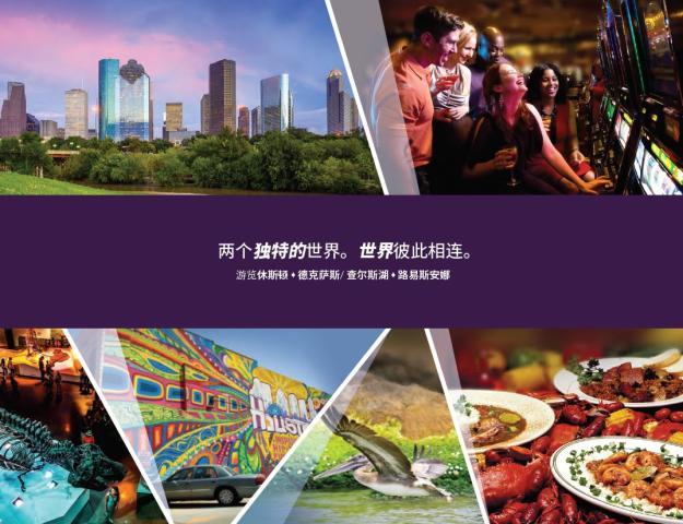 Chinese: Lake Charles & Houston Profile