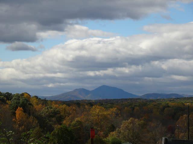 Hardy Fall Colors - Fall Photo