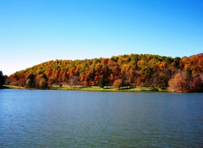Abbott Lake - Blue Ridge Parkway