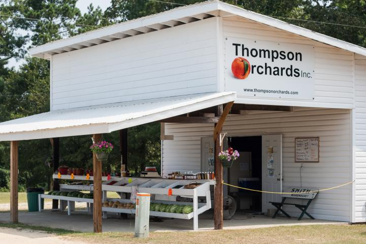 Thompson Orchards Stand