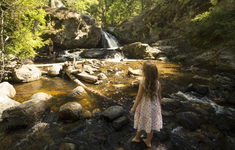 Mill Creek Hike