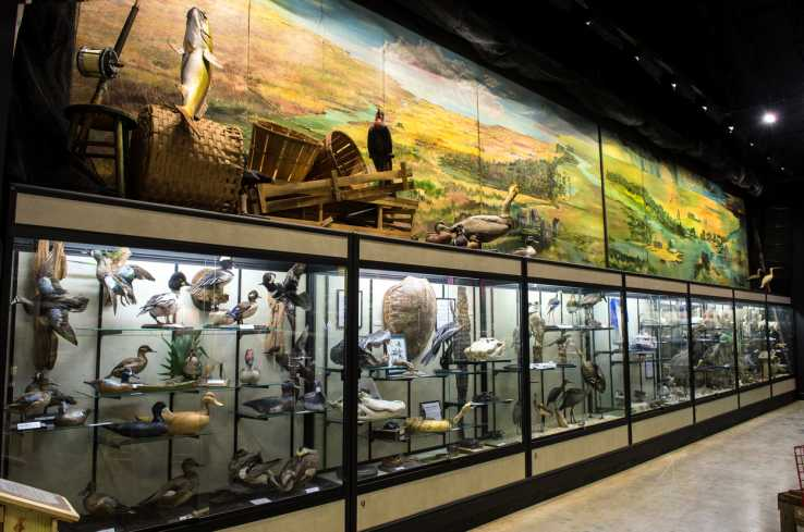 Lafitte-Barataria Museum Exhibit