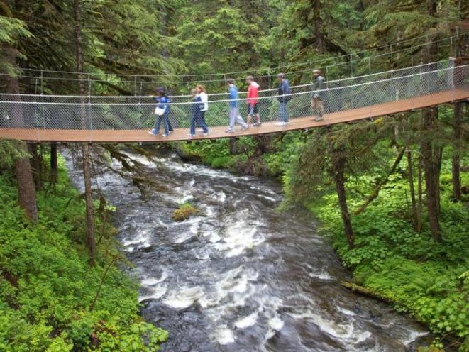Our Suspension Bridge over Fish Creek