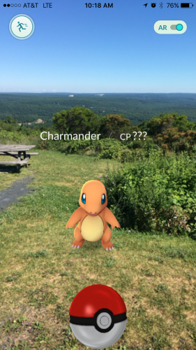 Charmander is taking in the scenic views at Big Pocono State Park
