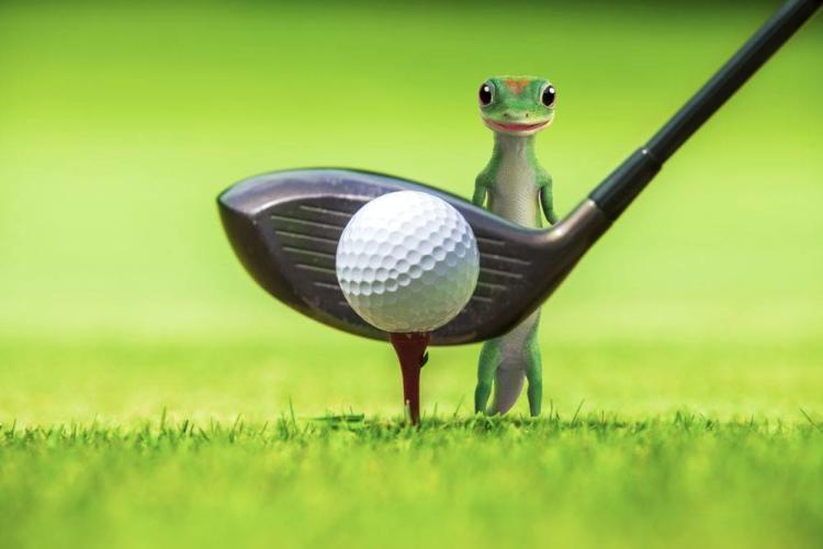 GEICO Gecko posing with golf club and ball