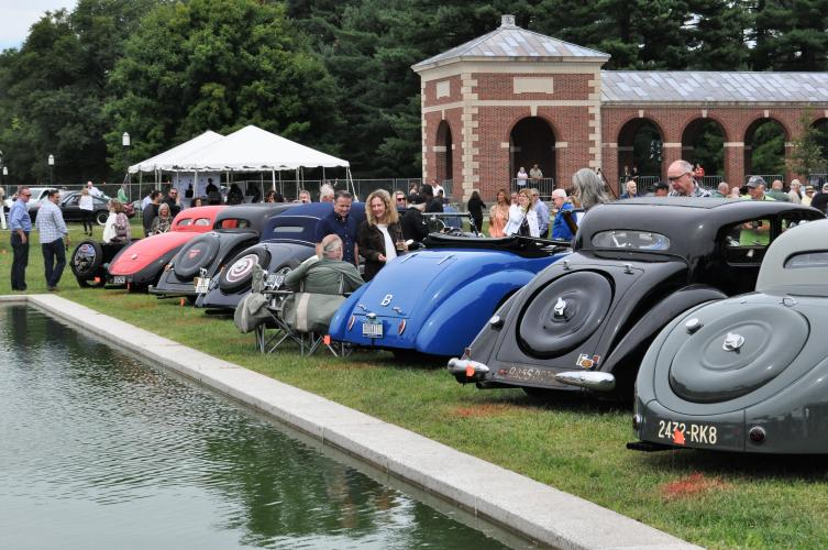 Back ends of Bugattis along the pool