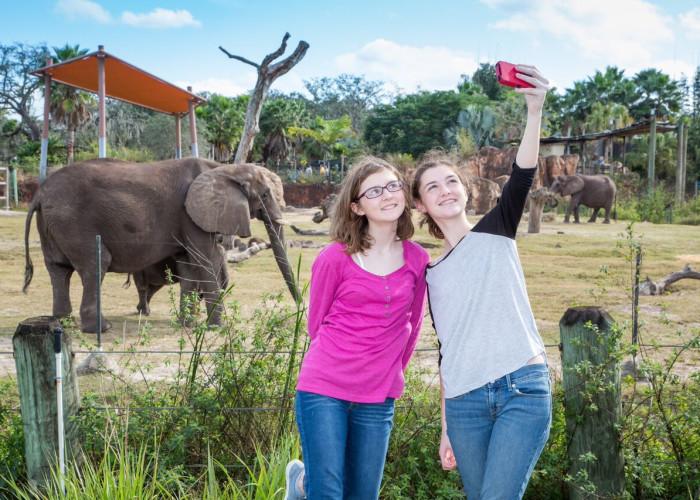 Girls With Elephant
