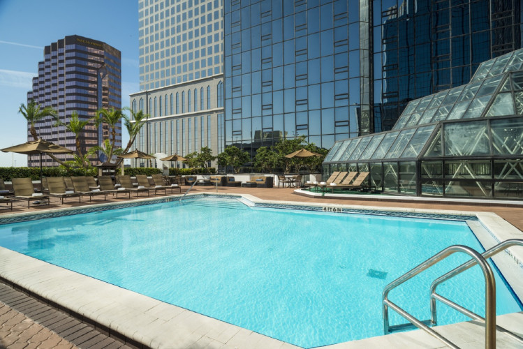 Pool Day Hilton Hotels In Tampa