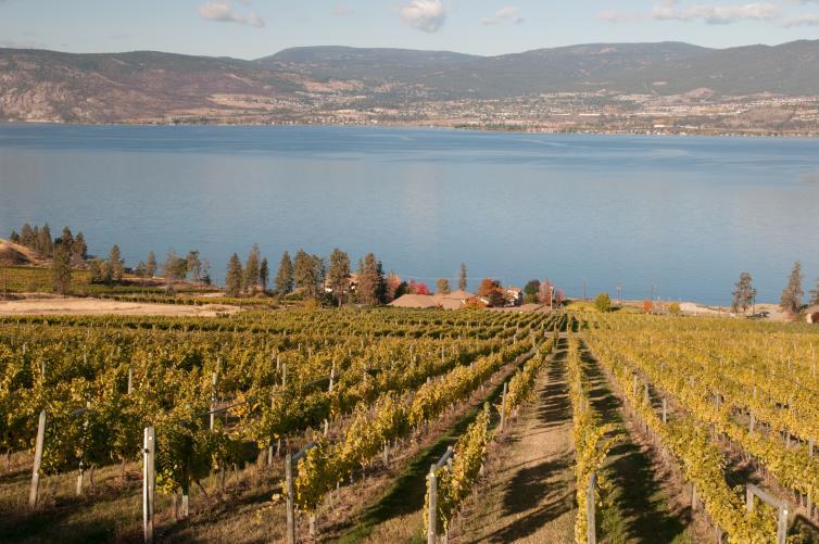 St. Hubertus Estate Winery