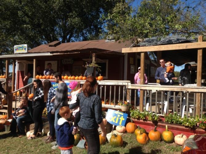 Meadowlark Pumpkin Patch People Fall Family Fun