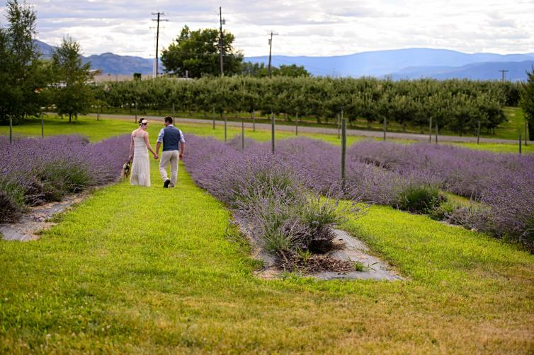 Couple at Lavender Farm