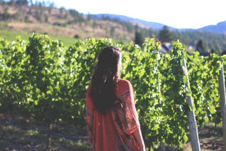 CedarCreek Winery