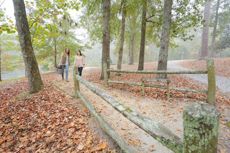 Lockerly Arboretum