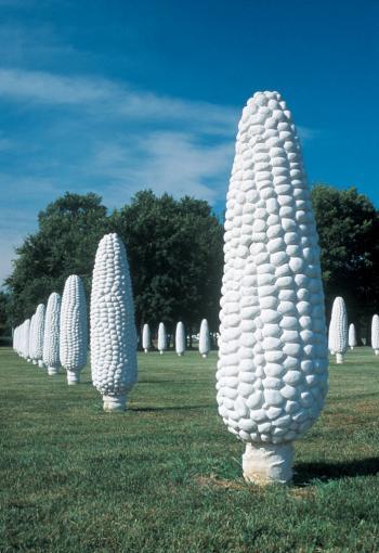 Field of Corn vertical