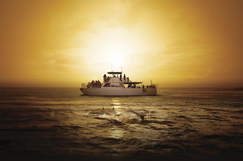 BIG Sunset Dinner Cruise 7
