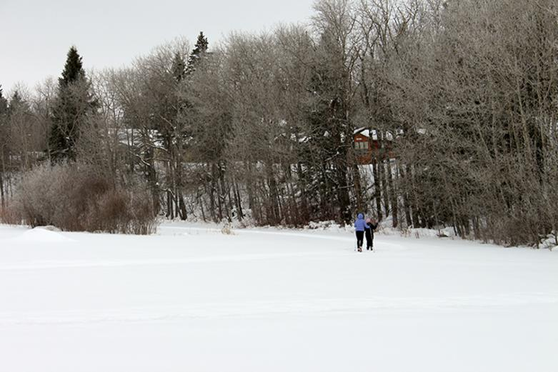 Winter in Riding Mountain National Park