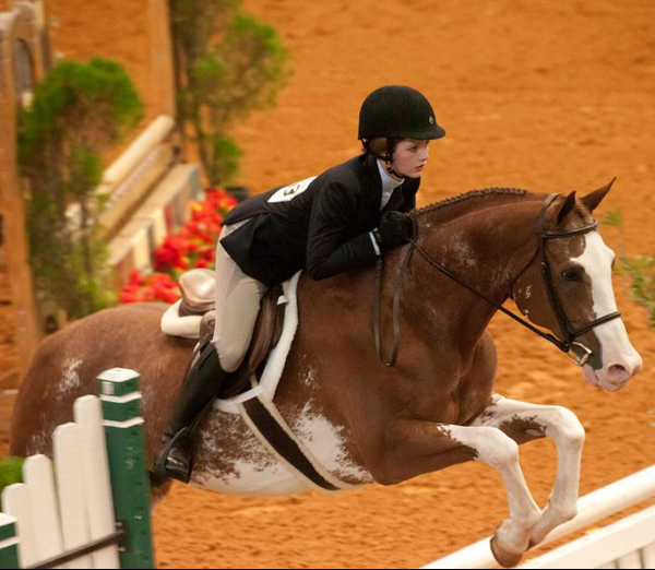APHA Eventing
