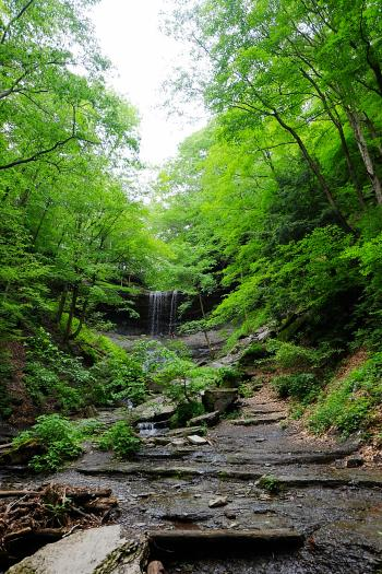 Tinker Falls in Upstate New York