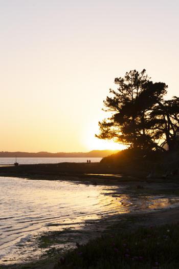 Los Osos sunset
