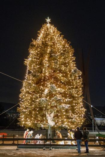 Bethlehem's Christmas Tree at Payrow Plaza