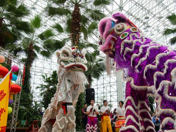 Chinese New Year Celebration at Navy Pier