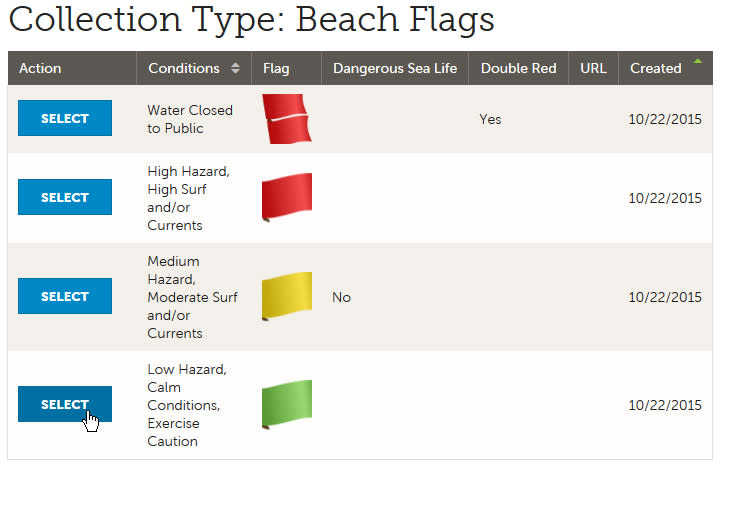 Flags Change Step 4
