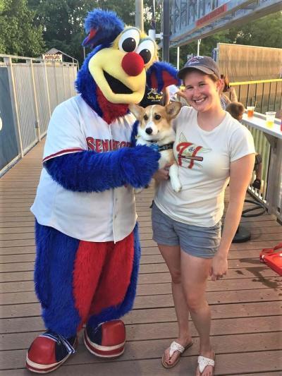 Harrisburg Senators Dog Night